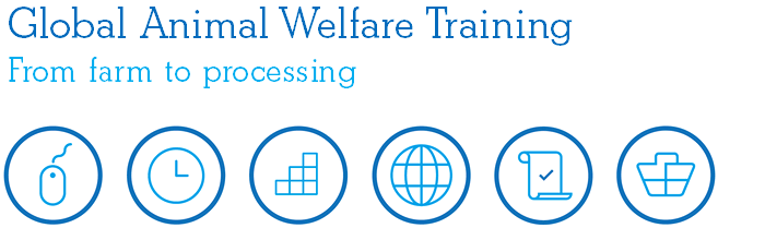 Global Animal Welfare Training - From farm to processing
